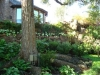landscaping_plano_tx
